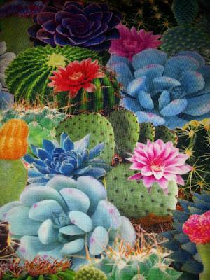 Digitale cactus tricot