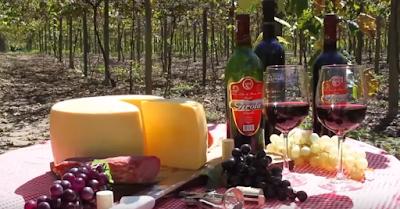 vinicolas de nova trento santa catarina