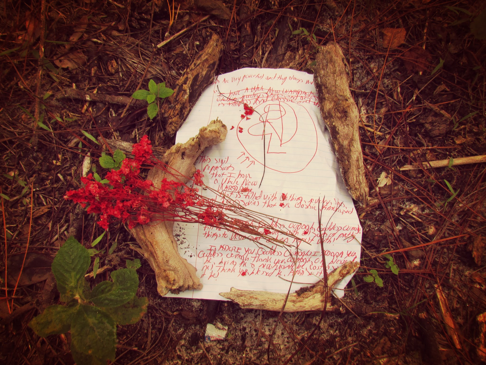 Sigil Magick in the forest on an autumn afternoon in the early morning hours with flower bundles, incense sticks and cones, and goddess altar worship and nature goddess offerings and gifts