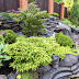 How Landscaping Adds To The Beauty Of Your Homes