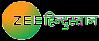Zee Hindustan, Zee TV News, Zee Hindustan channel