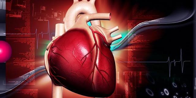 Faktor Pemicu Penyebab Jantung Bengkak