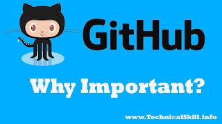 What is GitHub, whats importence of GitHub