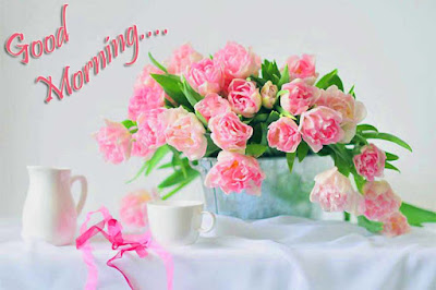 lovely-morning-with-pink-flowers