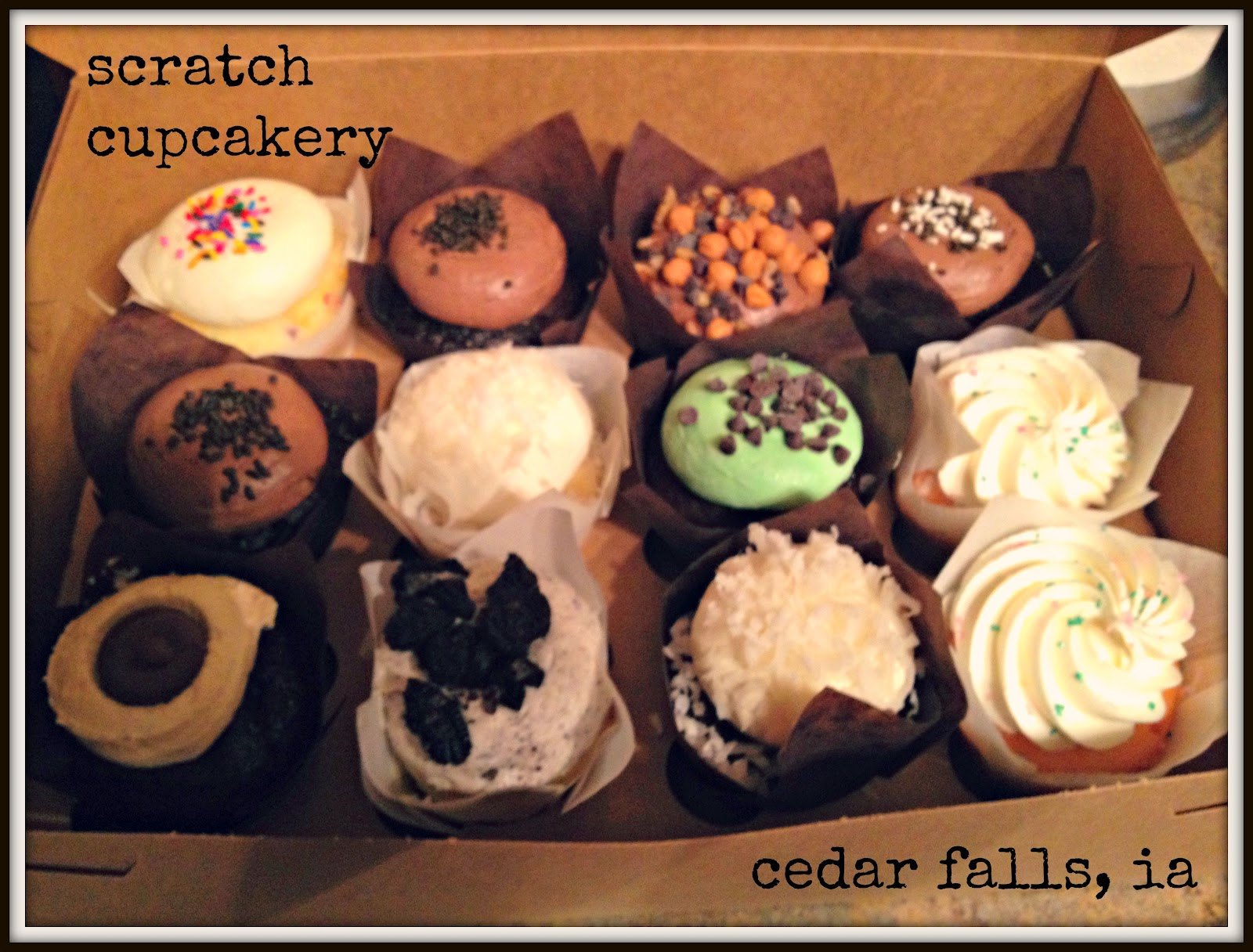 The Cupcake Activist: Guest Review: Scratch Cupcakes