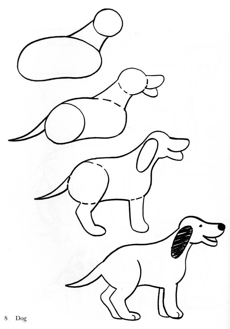 Desenho De Cachorro Realista Facil Mmod