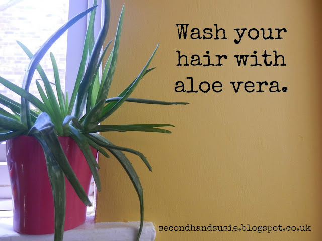 No 'Poo, My New Shampoo. Washing your Hair with Aloe Vera. seconhandsusie.blogspot.co.uk
