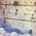 Derrumbe de una roca del sector sur del Kotel en 9 de Ab (VIDEO)