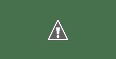 Harga Perlembar Gypsum Elephant
