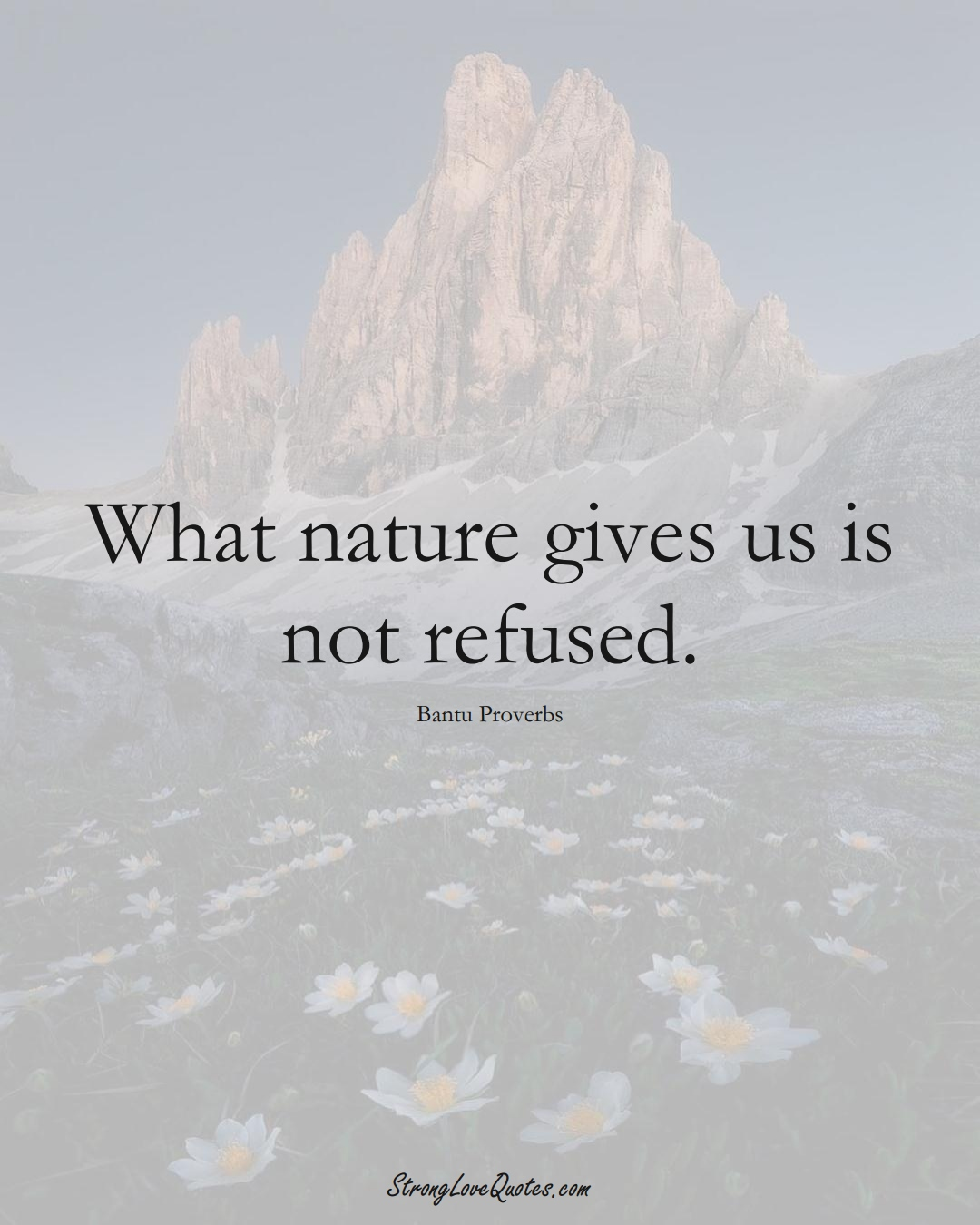 What nature gives us is not refused. (Bantu Sayings);  #aVarietyofCulturesSayings