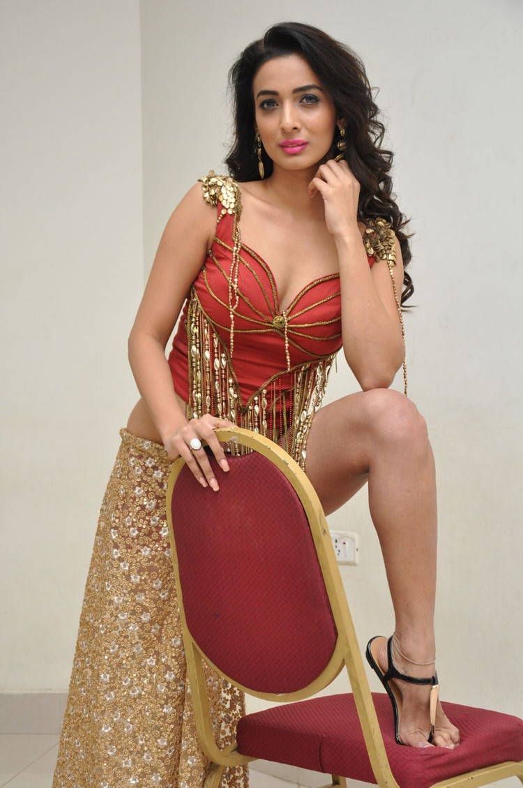 Heena Panchal New sizzling photo gallery-HQ-Photo-28