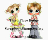 3de plaats Scrapbook Stamp Society