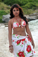 http://www.celebrityphotoshd.com/malayalam-actress-komal-jha-hot-wet-walk-bikini-spicy-pics/