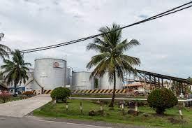 Kebijakan Biodiesel Yang Progresif Riskan Secara Ekonomi