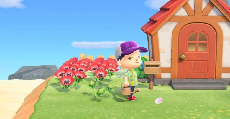 Animal Crossing: New Horizons - How to get and build the watering can
