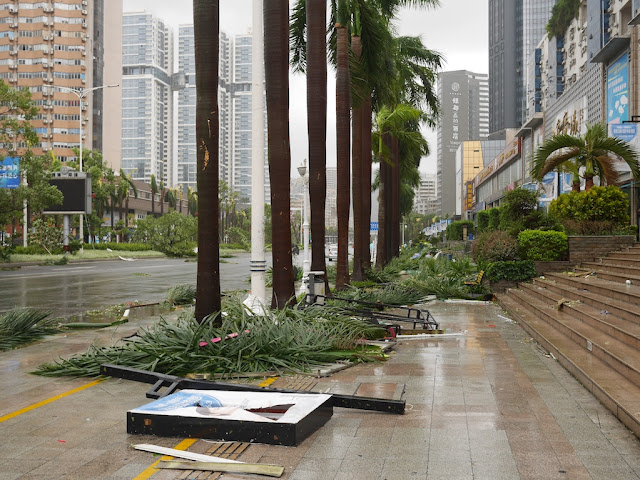 debris on sidewalks along Yingbin South Road in Zhuhai after Typhoon Hato
