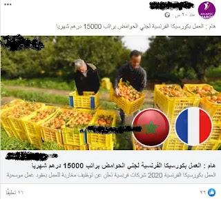 تنبيه و تحذير لزوارنا الكرام على الفيسبوك و مواقعنا على الويب 30%2B%25281%2529