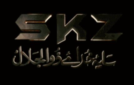 Pakistani movie SKZ trailer budget cast and Release date
