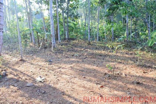 Tanah Murah Yogyakarta