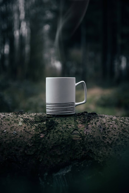 cup of tea on log in forest: Photo by Tiard Schulz on Unsplash