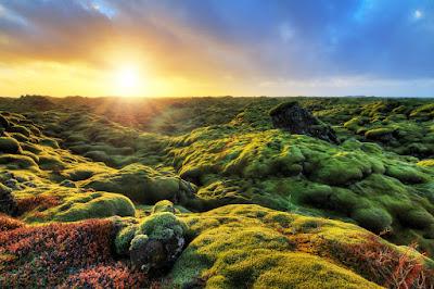 Campos de lava Eldhraun en Islandia al atardecer