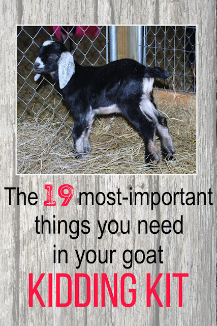 You need to have these 19 important items on hand before your goats are due to kid.
