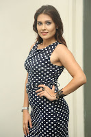 Alexius Macleod in Tight Short dress at Dharpanam movie launch ~  Exclusive Celebrities Galleries 037.JPG