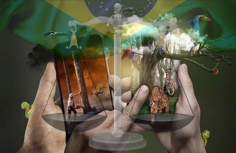 No quesito  ambiental, o Brasil é um dos países mais ricos em diversidade de espécies e ecossistemas. Mas, ainda não há a implementação, na prática, do que é exigido por lei. Por isso,  a possibilidade de utilização do Direito Tributário como instrumento de proteção ambiental, permite que, por meio das normas tributárias indutoras, haja efetividade na prática da lei e aumente as chances de um meio ambiente ecologicamente equilibrado.