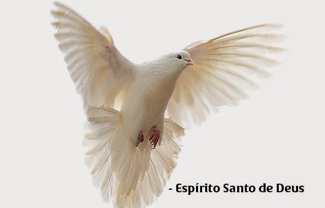 O Espírito Santo Vai Falar Com Você