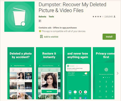 dumpster recovery my deleted picture and video files