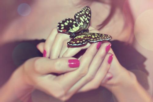 Resultado de imagem para borboleta tumblr