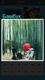 бамбуковая роща в которой прогуливаются посетители 667 слов 1 уровень