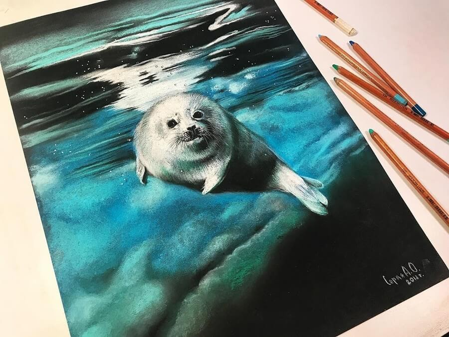 04-Seal-Pup-Anastasia-Gray-www-designstack-co