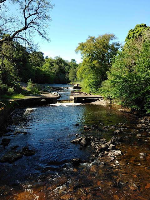 Ayr River walk