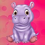 G4K Cute Hippopotamus Escape
