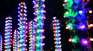Color Changing RGB bulbs make colors shift and dance in your public lighting displays