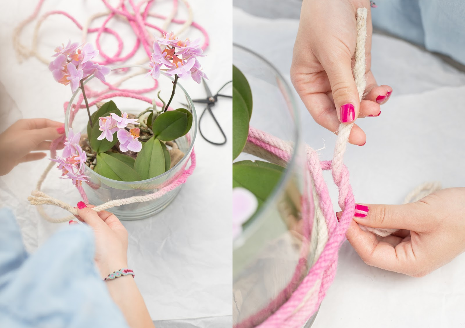 Pinke Orchideen DIY