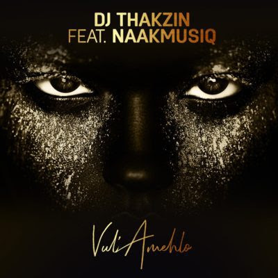 DJ Thakzin – Vul'Amehlo (feat. NaakMusiQ) 2018 | Download Mp3