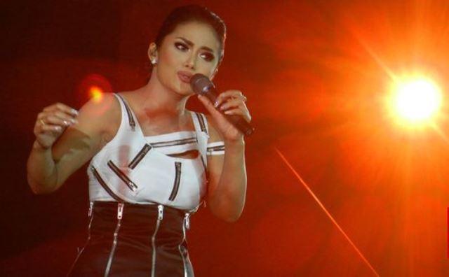 Dari Diva Panggung, Krisdayanti yang 'Pindah' jadi Wakil Rakyat ke Gedung DPR
