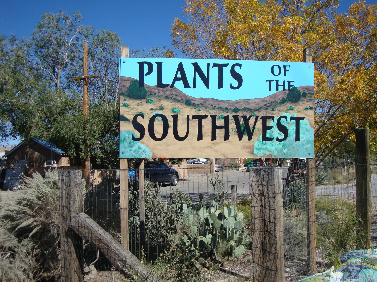 Plants Of The Southwest A Nursery Visit