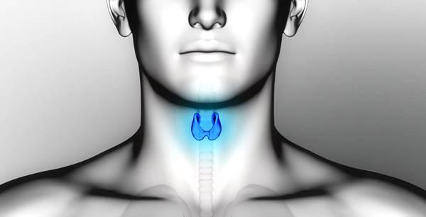 Hipotiroidismo enfermedad glándula tiroides