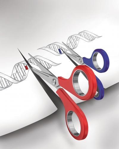 genoma permite cambios en el ADN