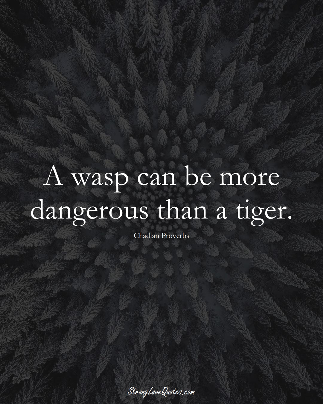 A wasp can be more dangerous than a tiger. (Chadian Sayings);  #AfricanSayings