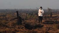 Presiden Jokowi Tiba di Pekanbaru di Tengah Kabut Asap Kebakaran Hutan