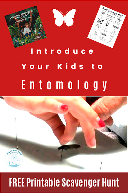 Introduce Kids to Entomology with a Free Printable Insect Hunt