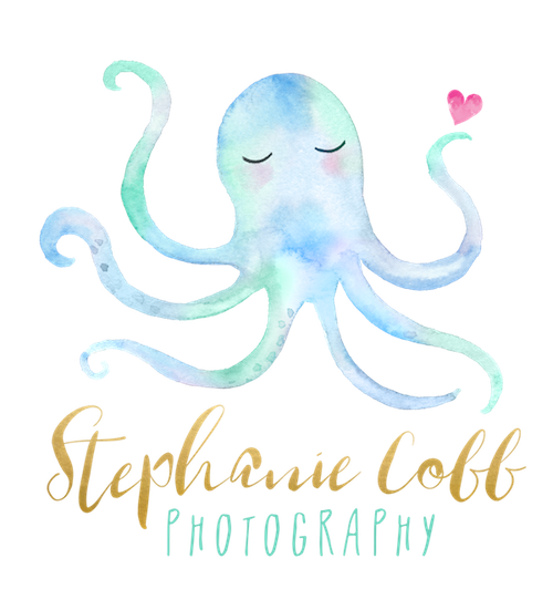Stephanie Cobb Photography