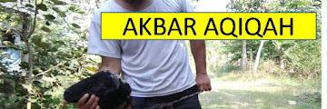Jasa Aqiqah Syar`i Murah Balekambang Kramat Jati Jakarta Timur WA: 0821-1306-3068