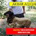 Jasa Aqiqah Kalideres Jakarta Barat WA: 0821-1306-3068