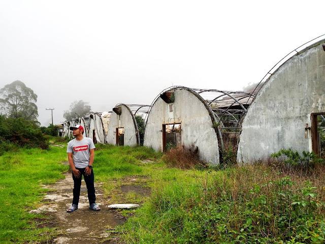 pabrik jamur cangar spot jadul vintage
