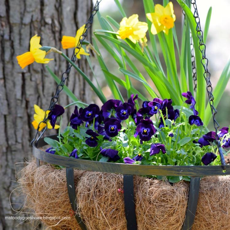 Hanging Flower Basket | Ms. Toody Goo Shoes